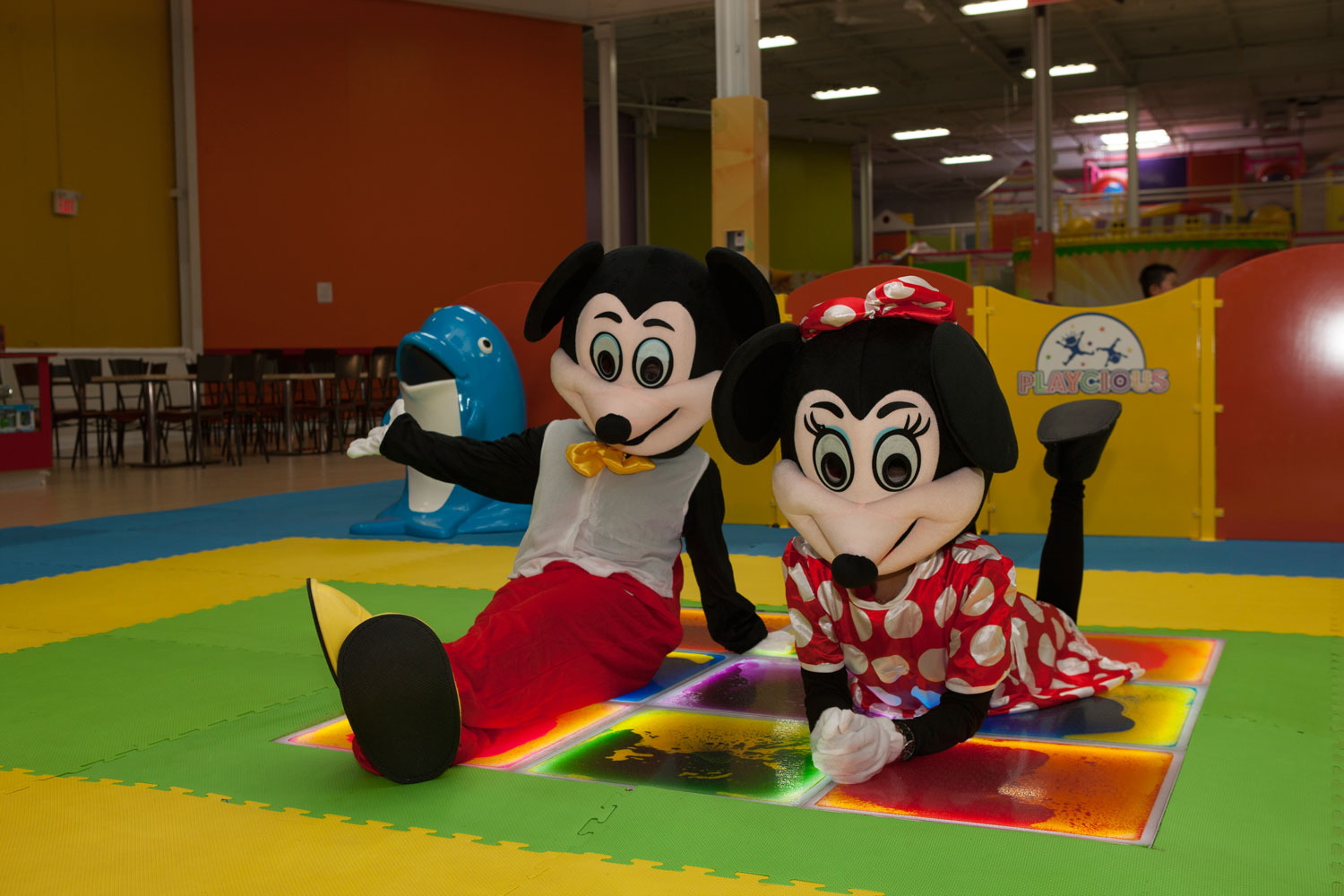 mickey and minnie mouse-6